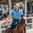 Stock Horse Arena and Billy Tea Show Paradise Countryr