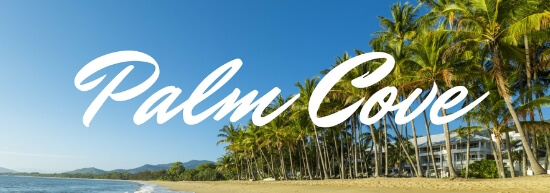 palm cove Banner