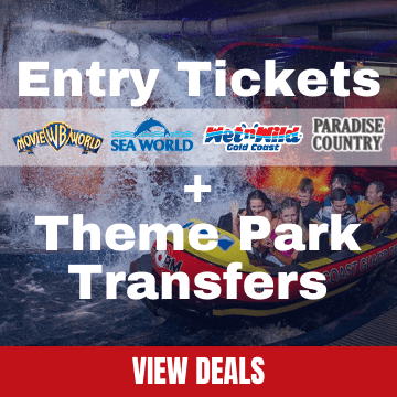 Theme Park Tickets and Theme Park Transfers