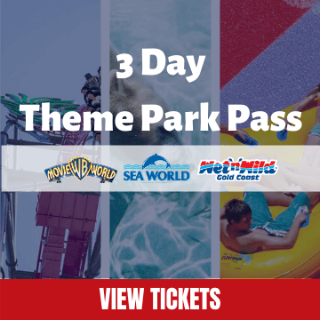 3 Day Theme Park Pass