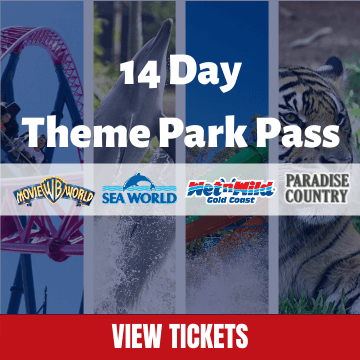 14 Day Theme Park Mega Pass