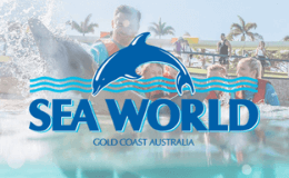 SeaWorld Theme Park Transfers