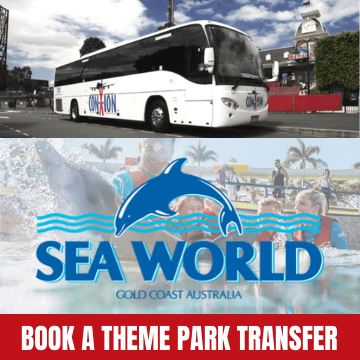 Sea World Theme Park Transfer